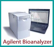 Agilent Bioanalyzer