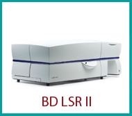 LSR II